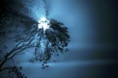 Clair de lune Photographie stock