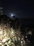 Clair de lune image libre de droits