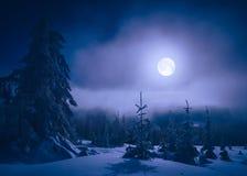 Clair de lune lumineux dans une vallée de montagne photo libre de droits