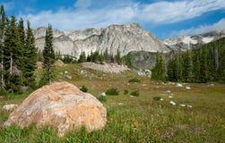 Clairière de montagne Photo libre de droits