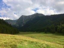 Clairière en montagnes photographie stock
