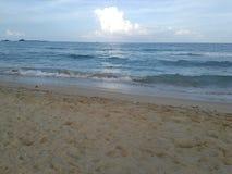 Clam и тихая болячка моря стоковая фотография rf