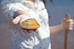 Clam Digger Royalty Free Stock Photo