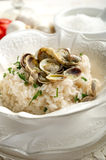 Clam rice Stock Images