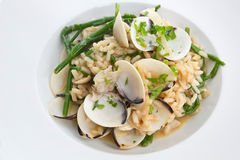 Clam & Samphire Risotto Royalty Free Stock Image