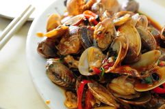 Clam seafood with sauce Stock Photography