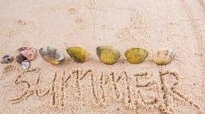 Shell With Summer Word Ii Fotos de archivo libres de regalías