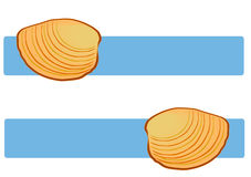 Clam Shells on Blue Stock Images
