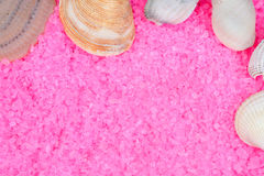 Clam shells on pink bath salts Royalty Free Stock Image