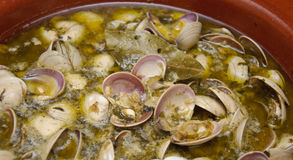 Clam style seafood Stock Photo