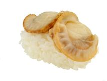 Clam sushi Royalty Free Stock Photography