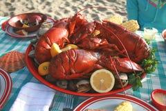 clambake龙虾 免版税图库摄影