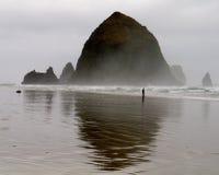 clamming的海浪 免版税库存图片