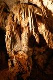clamouse подземелья Стоковые Фотографии RF