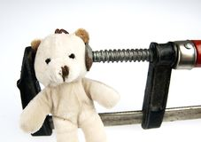 Clamp on the head teddy bear toy Stock Image