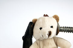 Clamp on the head teddy bear toy. Royalty Free Stock Images