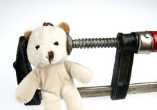 Clamp on the head teddy bear toy. Stock Photos