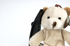 Clamp on the head teddy bear toy. Royalty Free Stock Photography