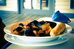 clams Стоковая Фотография