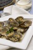 clams Стоковое Изображение