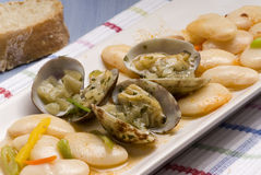 Clams and beans stew.Spanish cuisine. Royalty Free Stock Images
