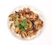 Clams with Chili Paste Stock Photography