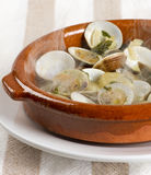 Clams cooked Stock Image