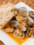 Clams cooked in the recipe Royalty Free Stock Images