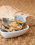 Clams cooked in the recipe Stock Image