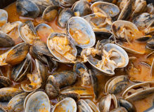 Clams cooked in the recipe Royalty Free Stock Image