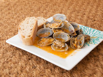 Clams cooked in the recipe Stock Photos