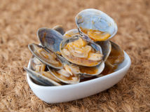Clams cooked in the recipe Stock Images