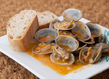 Clams cooked in the recipe Royalty Free Stock Photos