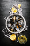 Clams in a cup with ice, wine and lemon. Royalty Free Stock Photo