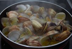 Clams. Exquisite and very nutritive crustacean royalty free stock photos