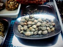 Clams. Stock Image