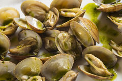 Clams with green sauce Royalty Free Stock Image