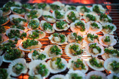 Clams on hot grill Royalty Free Stock Images