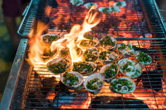 Clams on hot grill Stock Photo