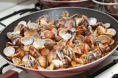 Clams in marinara sauce Stock Photos