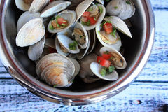 Clams metal bowl Royalty Free Stock Images