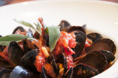 Clams and mussels Stock Photos
