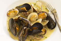 Clams and mussels in a sauce Stock Photos