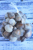 Clams netted bag vertical Royalty Free Stock Photos
