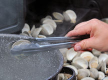 Clams on an outdoor grill Stock Images