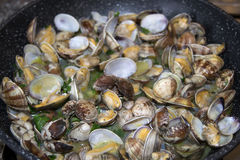 Clams in pan Royalty Free Stock Photo