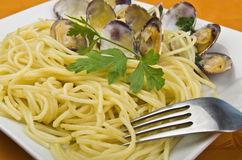 Clams sauce with spaghetti Royalty Free Stock Photo