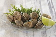 Clams - Seafood Royalty Free Stock Image