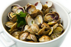Clams soup Royalty Free Stock Photography