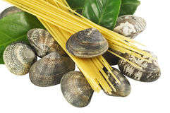 Clams with spaghetti Stock Photo